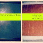 window box re-vamp.