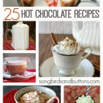 25 Delicious Hot Chocolate Recipes