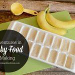 Adventures in Baby Food Making