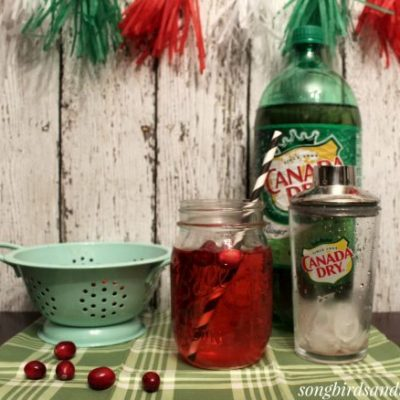 Cool, Cranberry Cocktail with Canada Dry