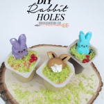 DIY Rabbit Holes