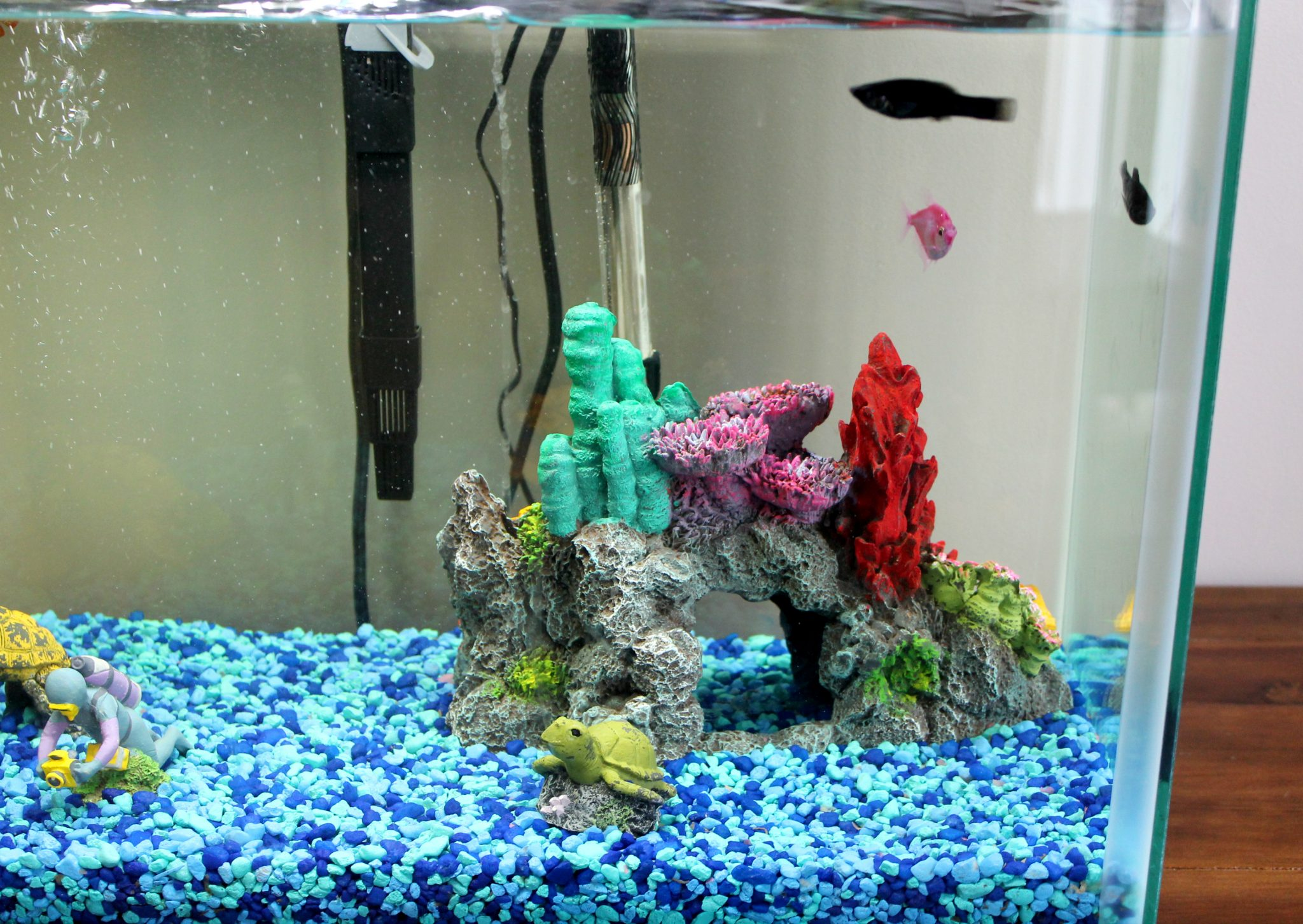 Fish tanks at petsmart i donu0027t know about you but i for Petsmart fish tank stand