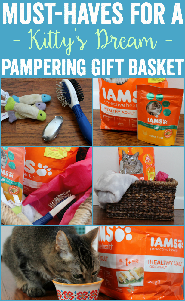 Kitty's Dream Pampering Gift Basket