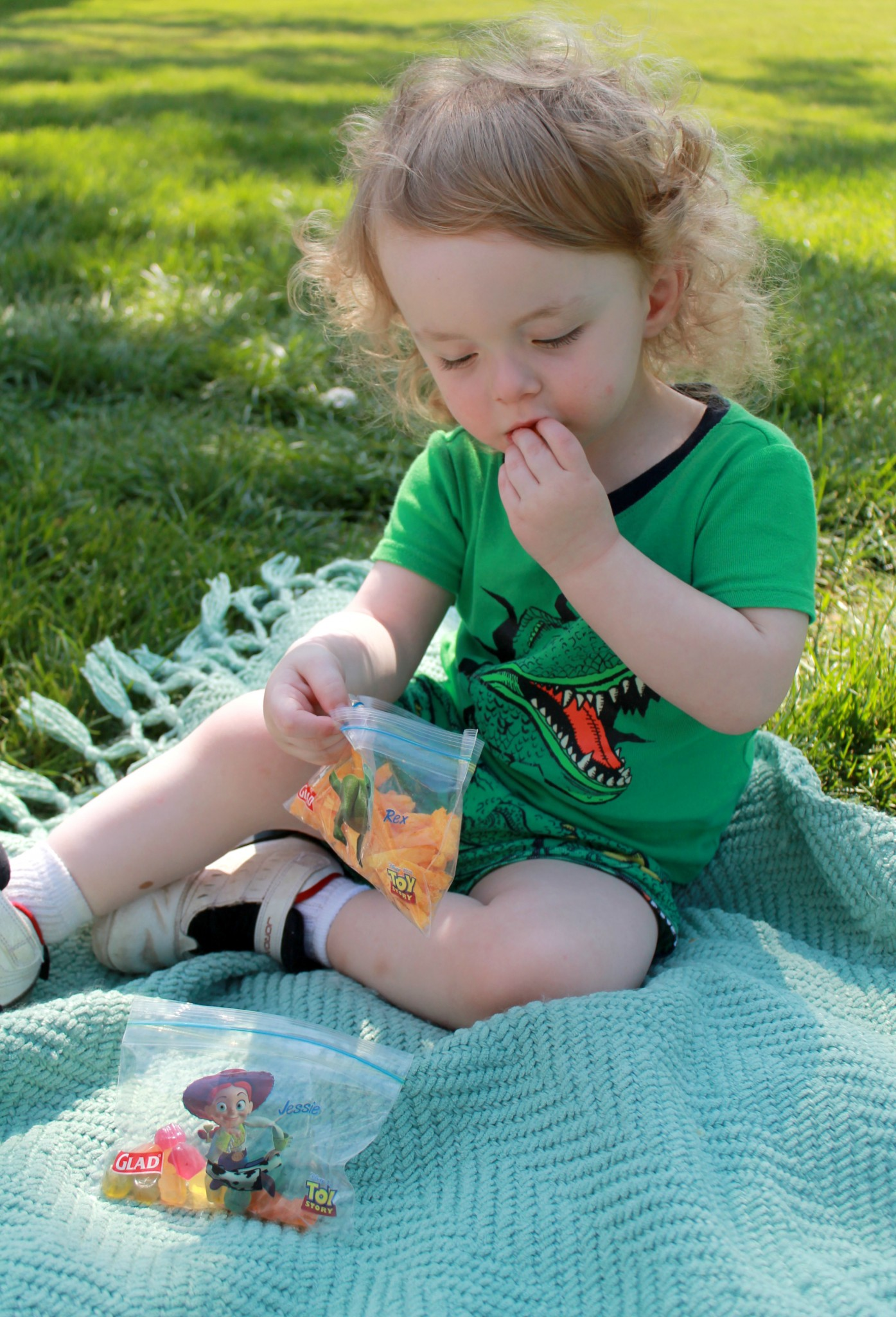 Tips for having a stress-free family picnic