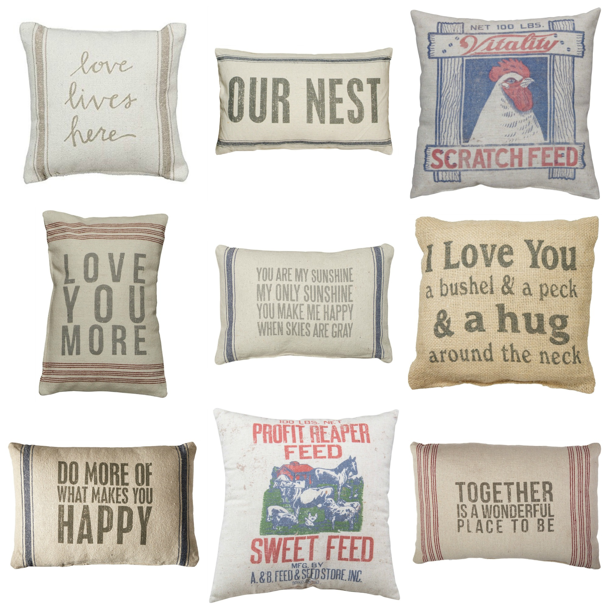 Farmhouse Pillows That You Can Buy On Amazon