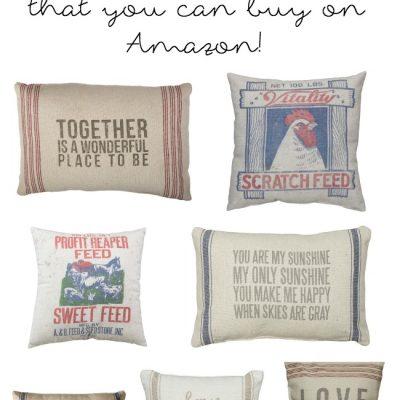 Farmhouse Pillows (That you can buy on Amazon!)