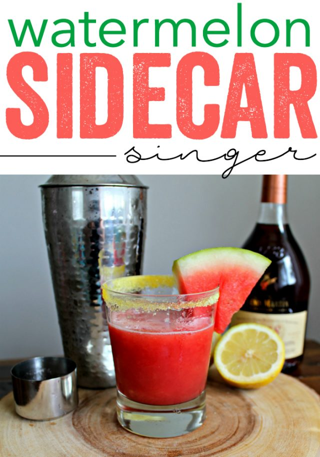 Watermelon Sidecar Singer