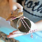 How to Get Free Books + An Easy Bird Feeder Craft