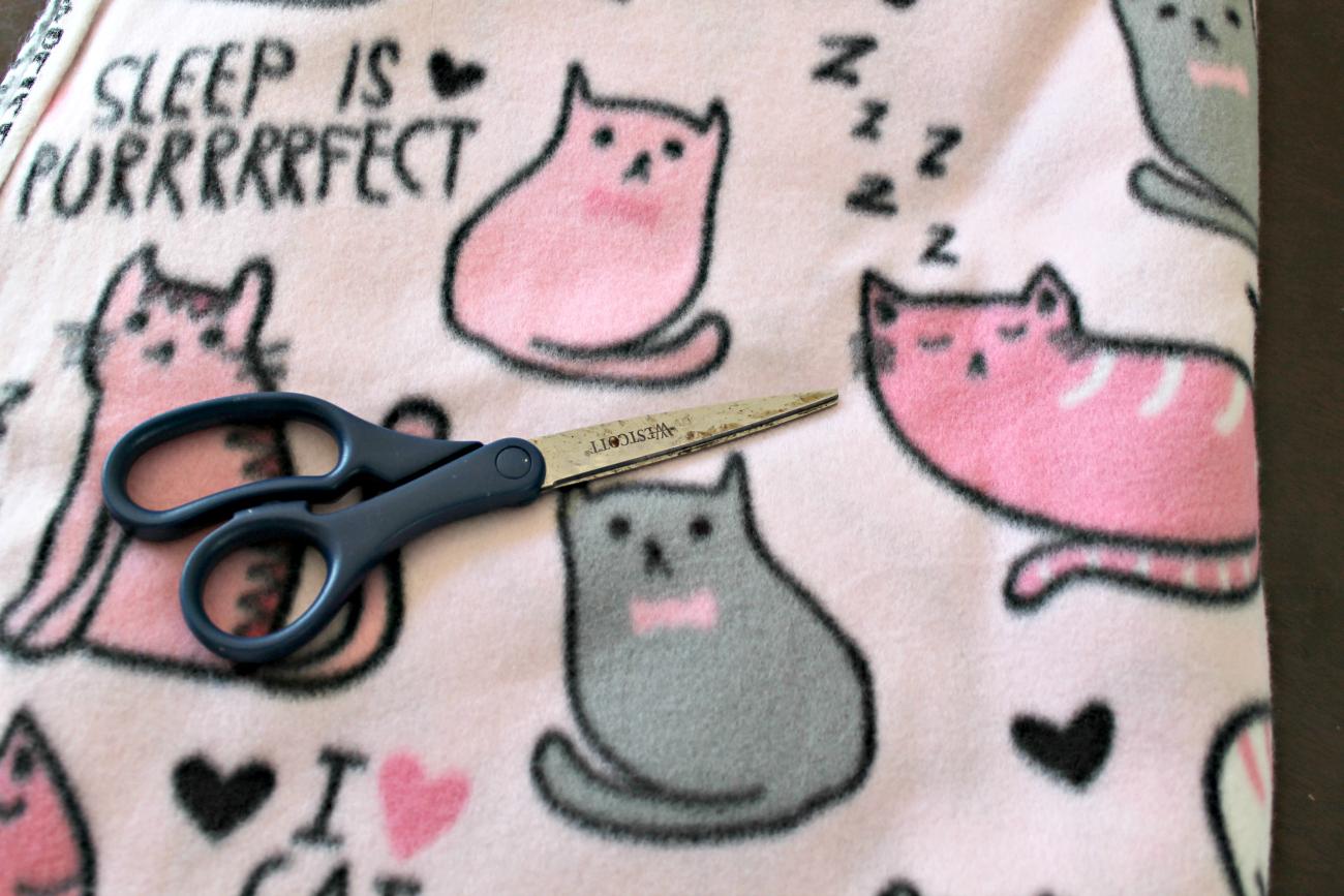 DIY Pet Blanket