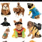 20 Halloween Costumes for Dogs!