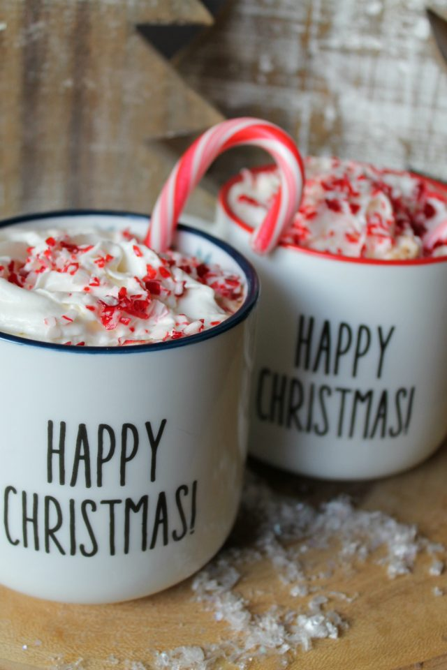 The Best EVER Crock Pot Peppermint Hot Chocolate