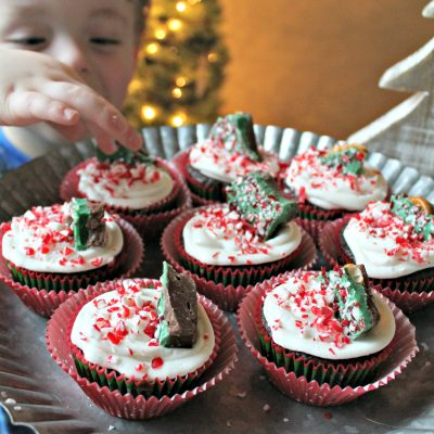 Holiday Bark Cupcakes
