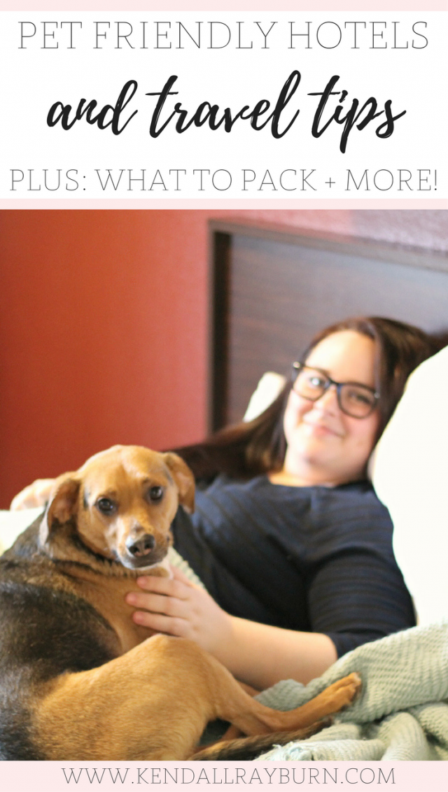 Pet Friendly Hotels and Travel Tips