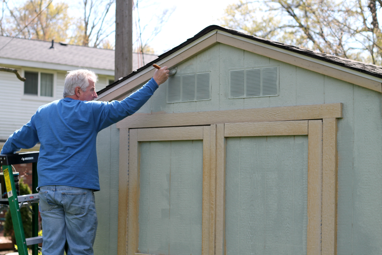 Budget-Friendly Shed Makeover