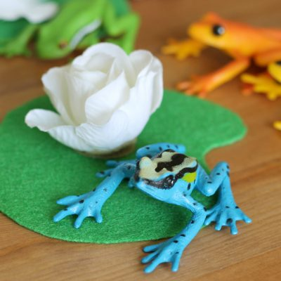 Frog Sensory Bin + DIY Lily Pads & Cattails