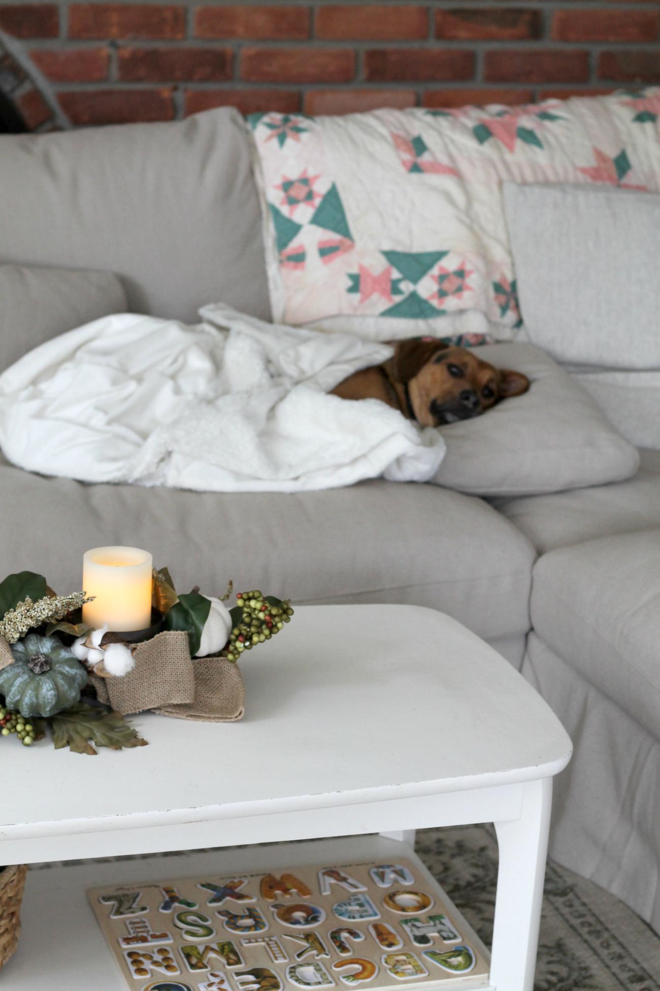 The Perfect Family Sofa