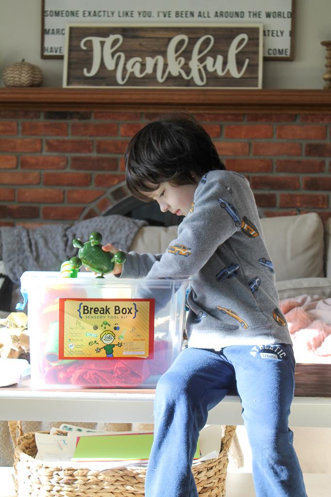 Autism Break Box