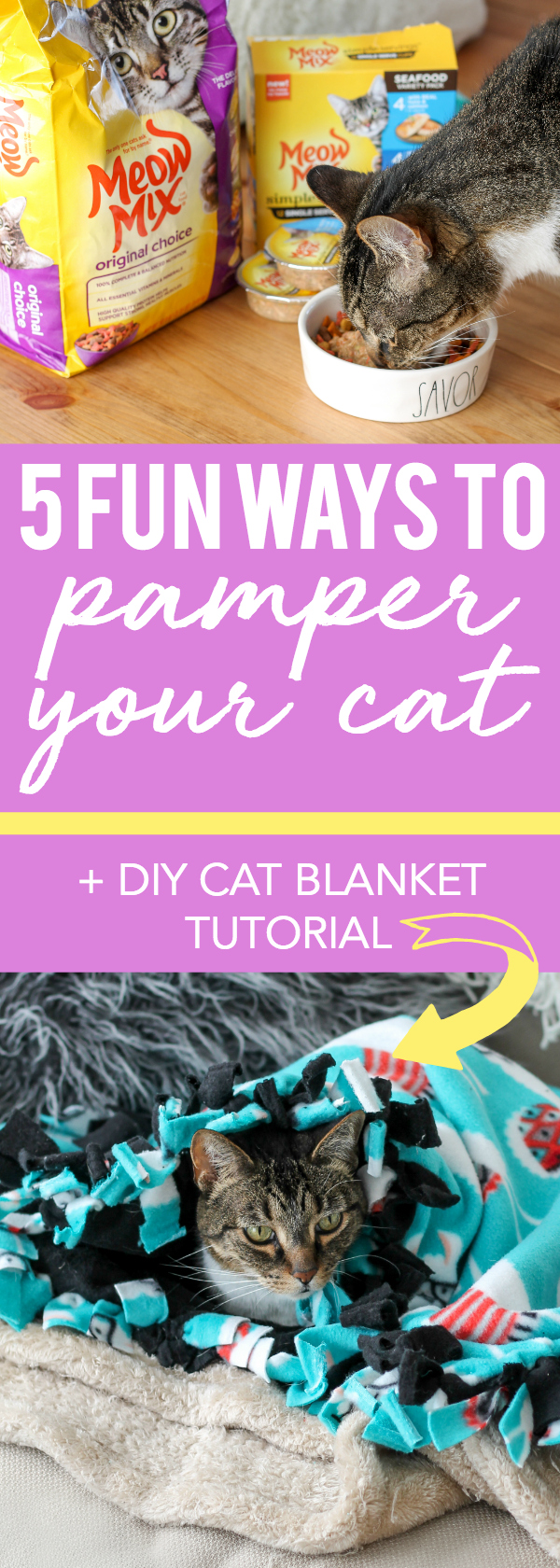 5 Fun Ways to Pamper Your Cat