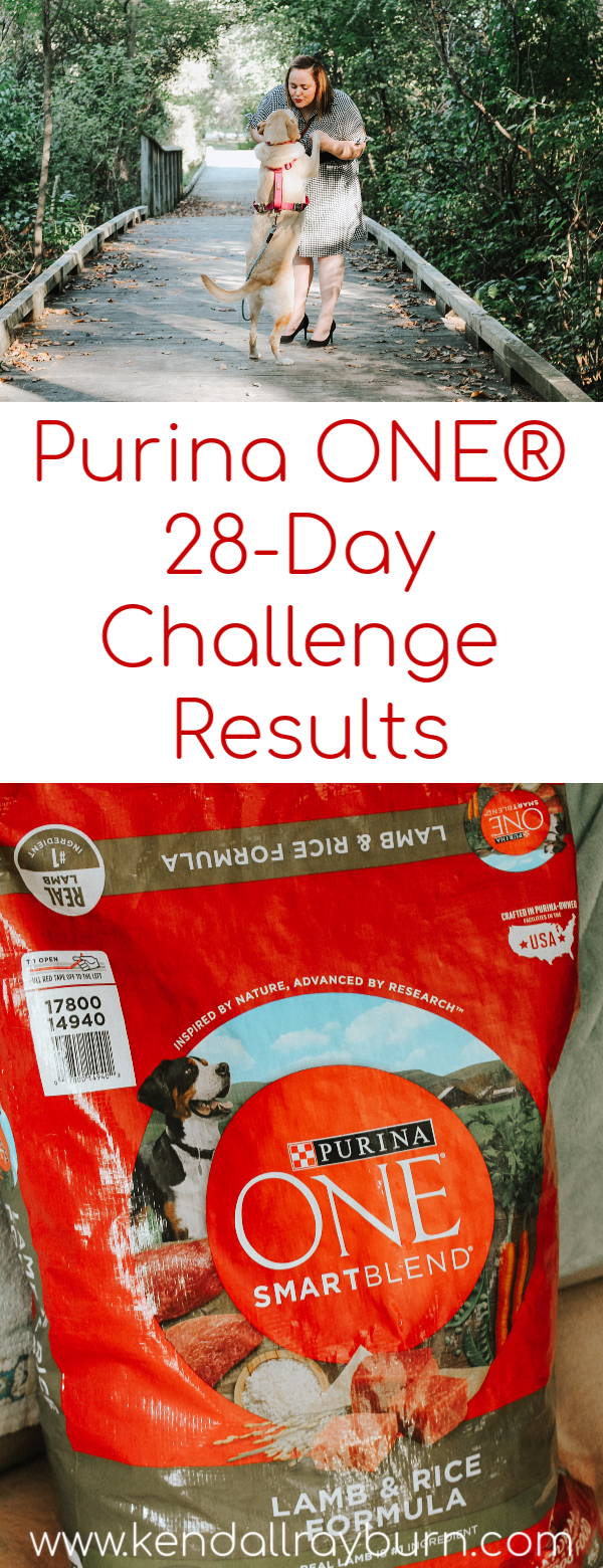 Purina ONE® 28-Day Challenge Results