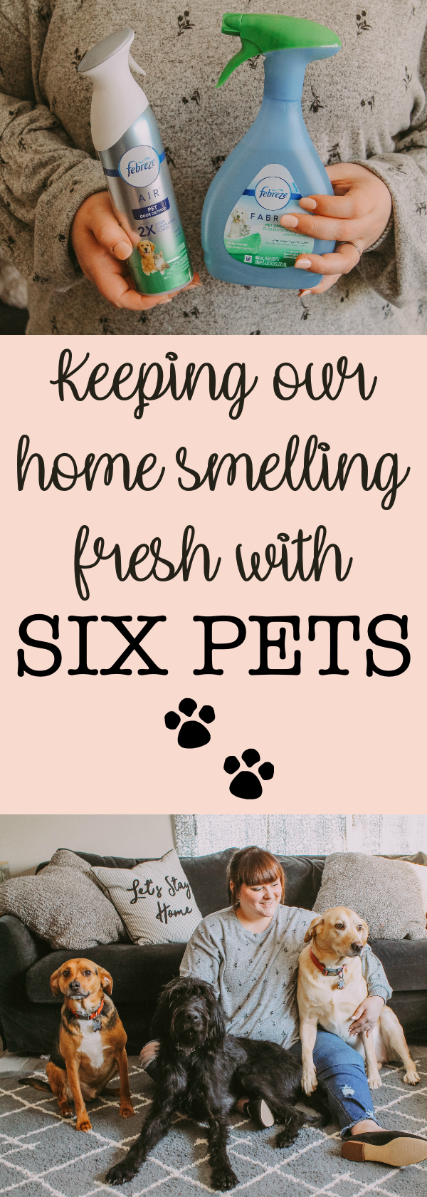 Keeping Our Home Smelling Fresh with Six Pets