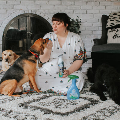 How We Keep Our Home with Six Rescue Pets Smelling Fresh
